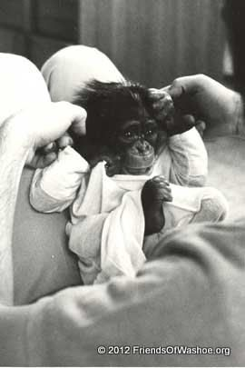 Tatu as an infant