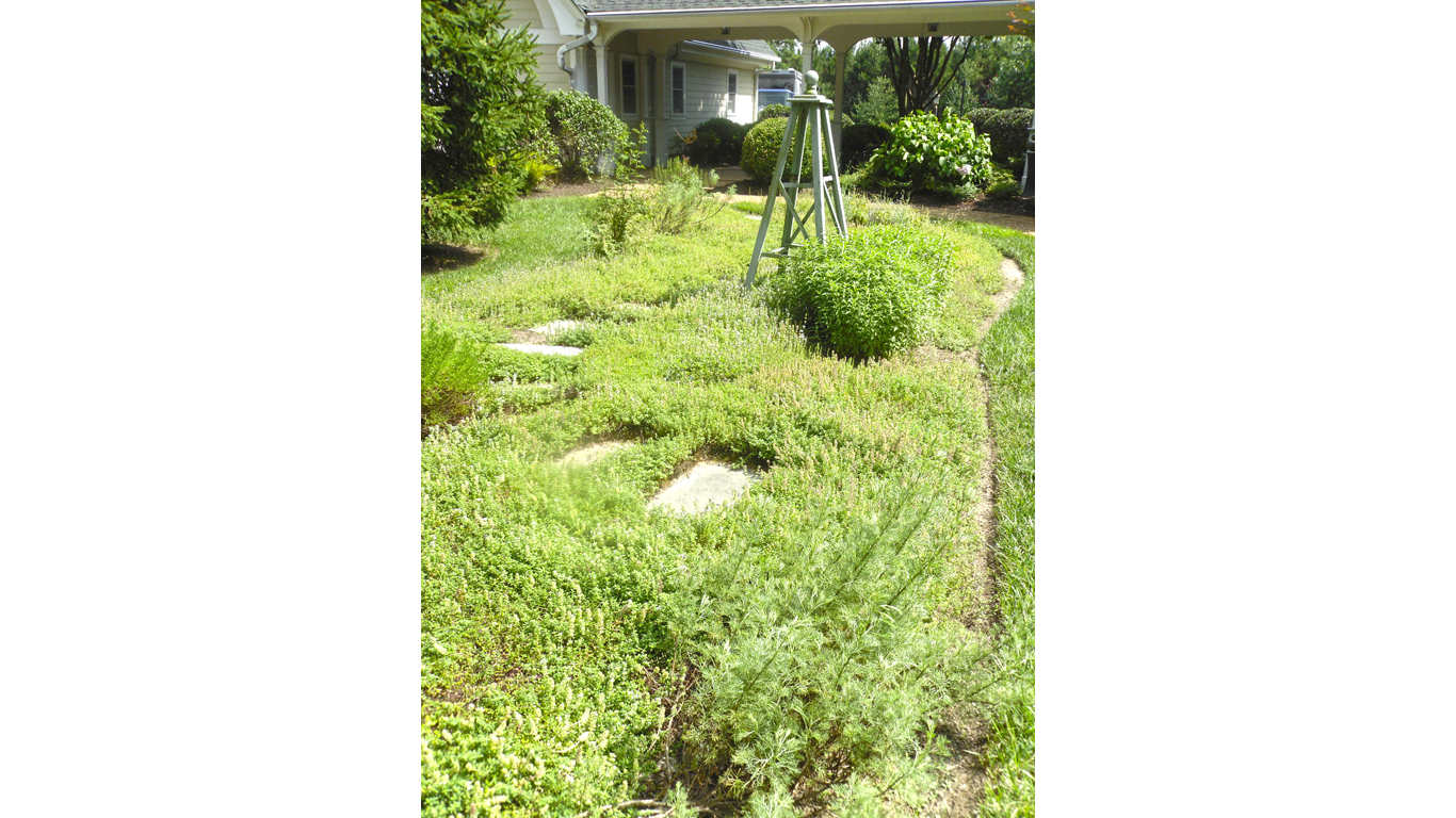Fragrance Garden 2