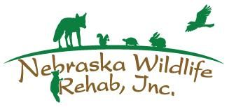Nebraska Wildlife Rehab