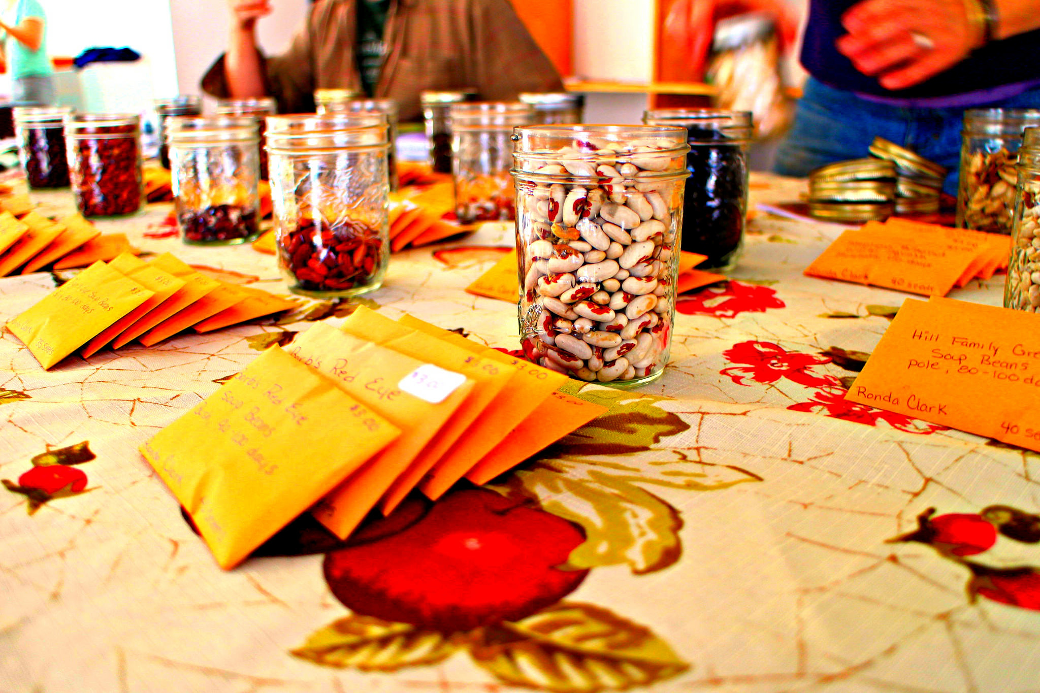 Seed to Sustainability Workshop Series