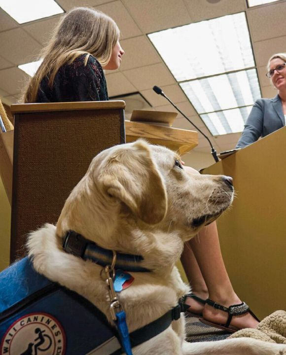 How Facility Service Dogs Help Crime Victims in Court Rooms