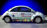 Vinyl Cut Vehicle Graphics