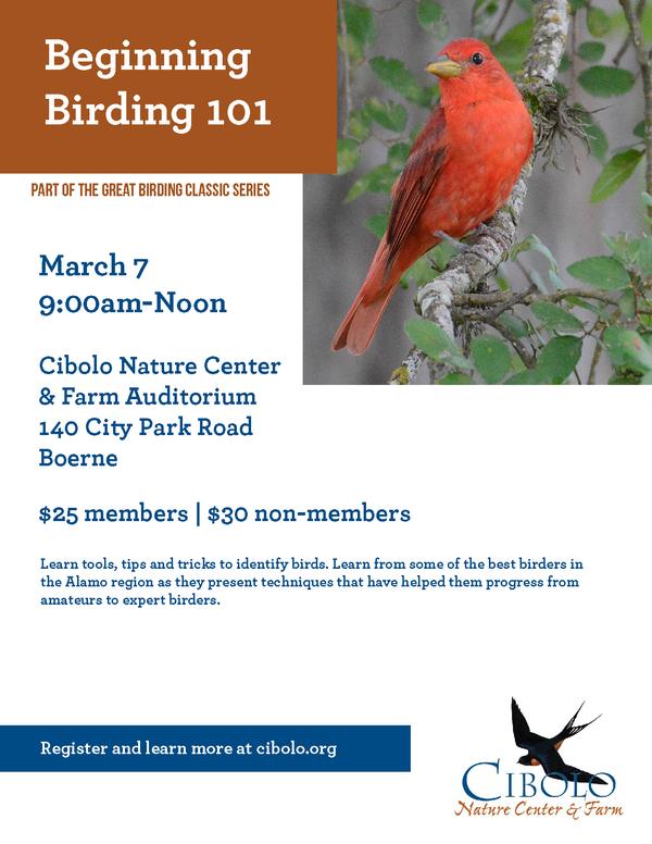 CNC:  Beginning Birding 101