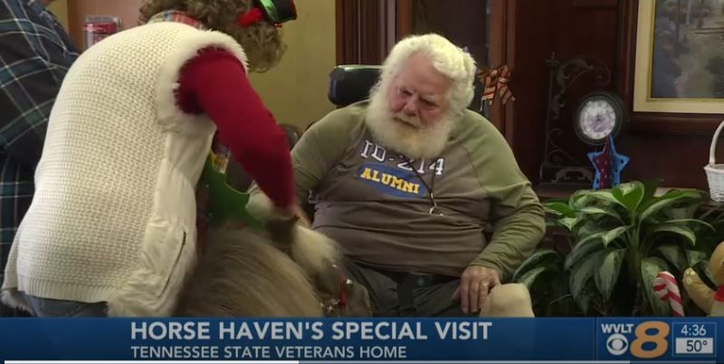 Horse Haven's Special Holiday Visit with the Veterans