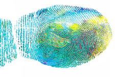 You & Your MS Fingerprint