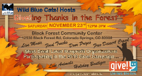 Give!ing Thanks in the Forest