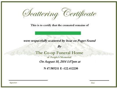 Scattering Certificate
