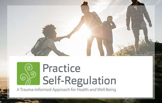 Practice Self-Regulation Sexual Health Program