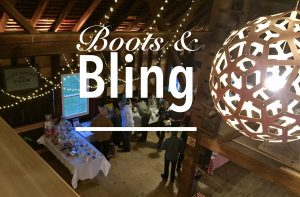 HVEF Boots and Bling Gala