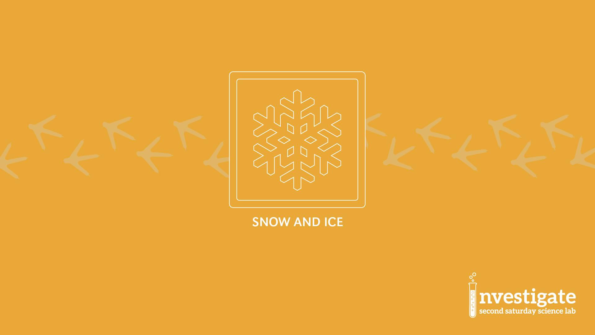 Investigate: Second Saturday Science Lab - Snow and Ice