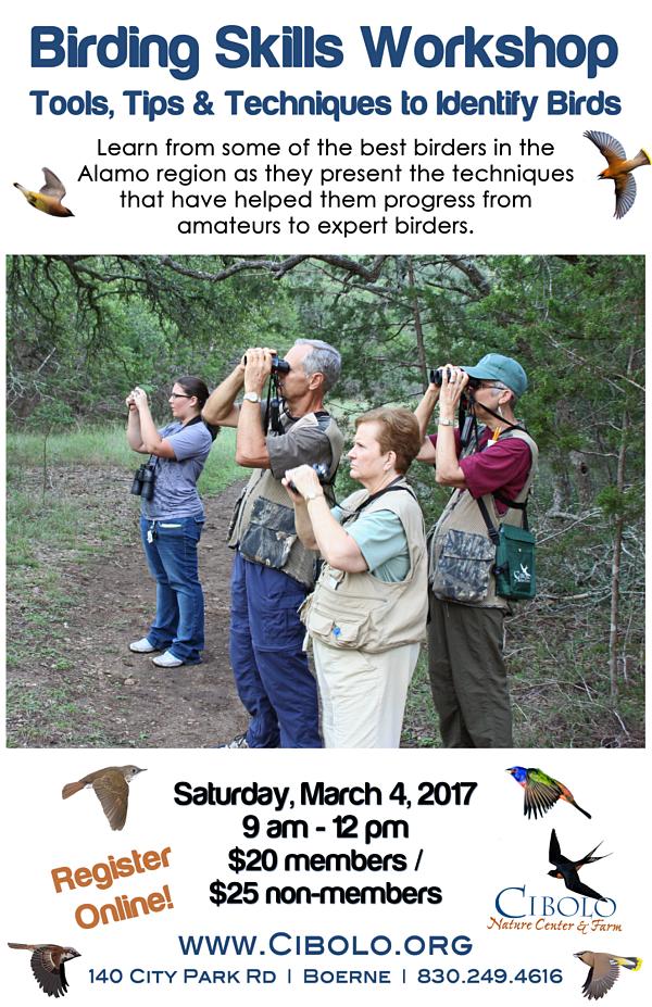 CNC: Birding Skills Workshop