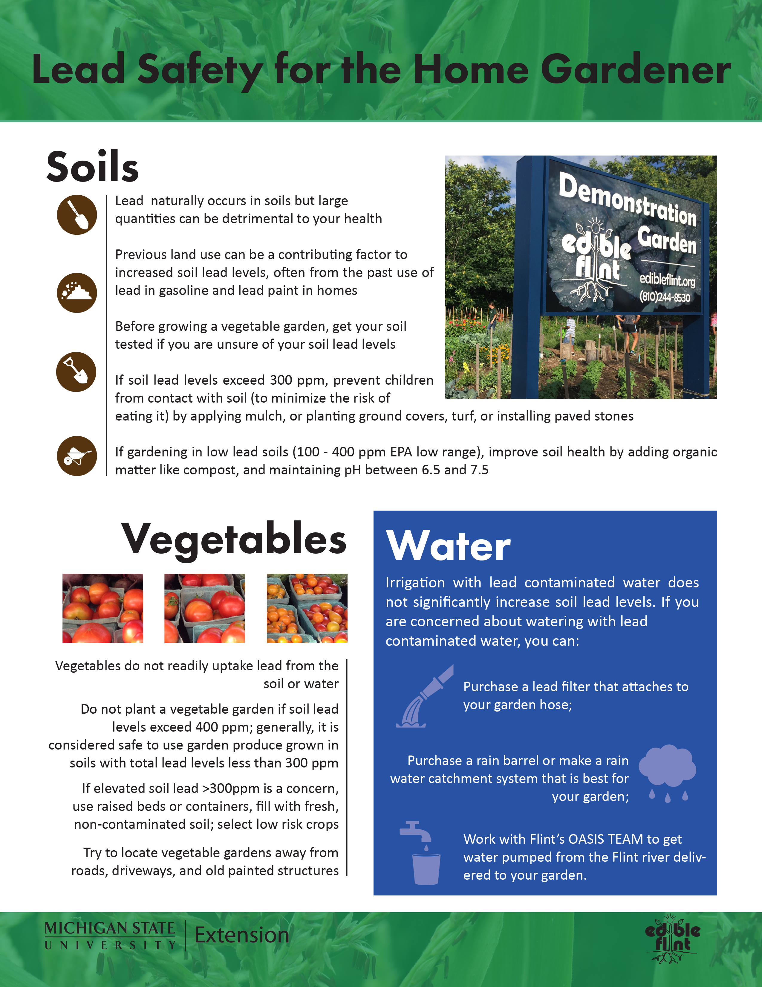 Lead-Safe Gardening