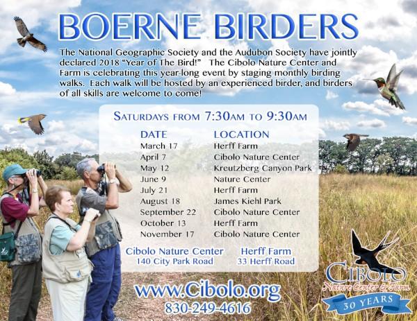 HERFF FARM: Boerne Birders