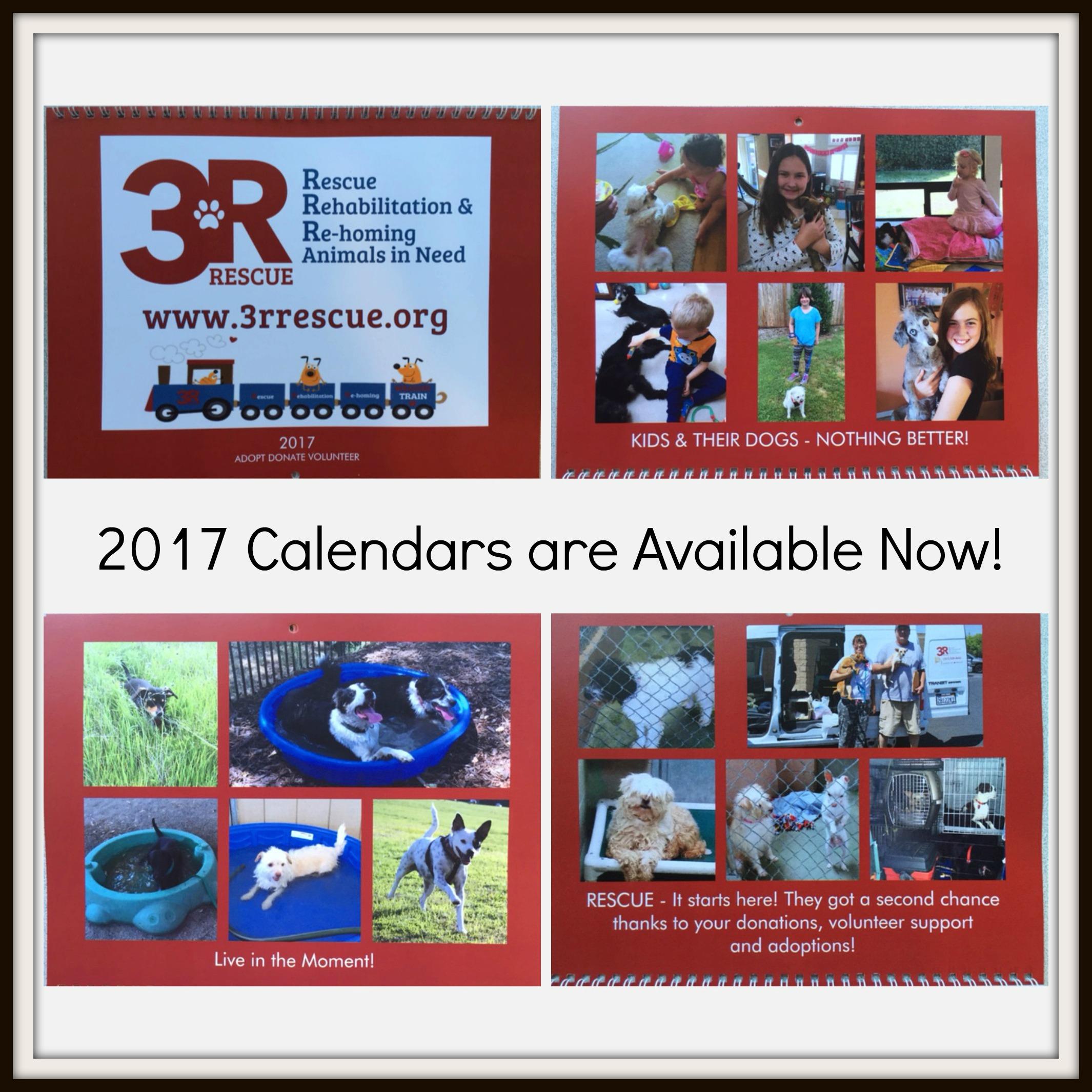 3R Rescue 2017 Calendars are here!
