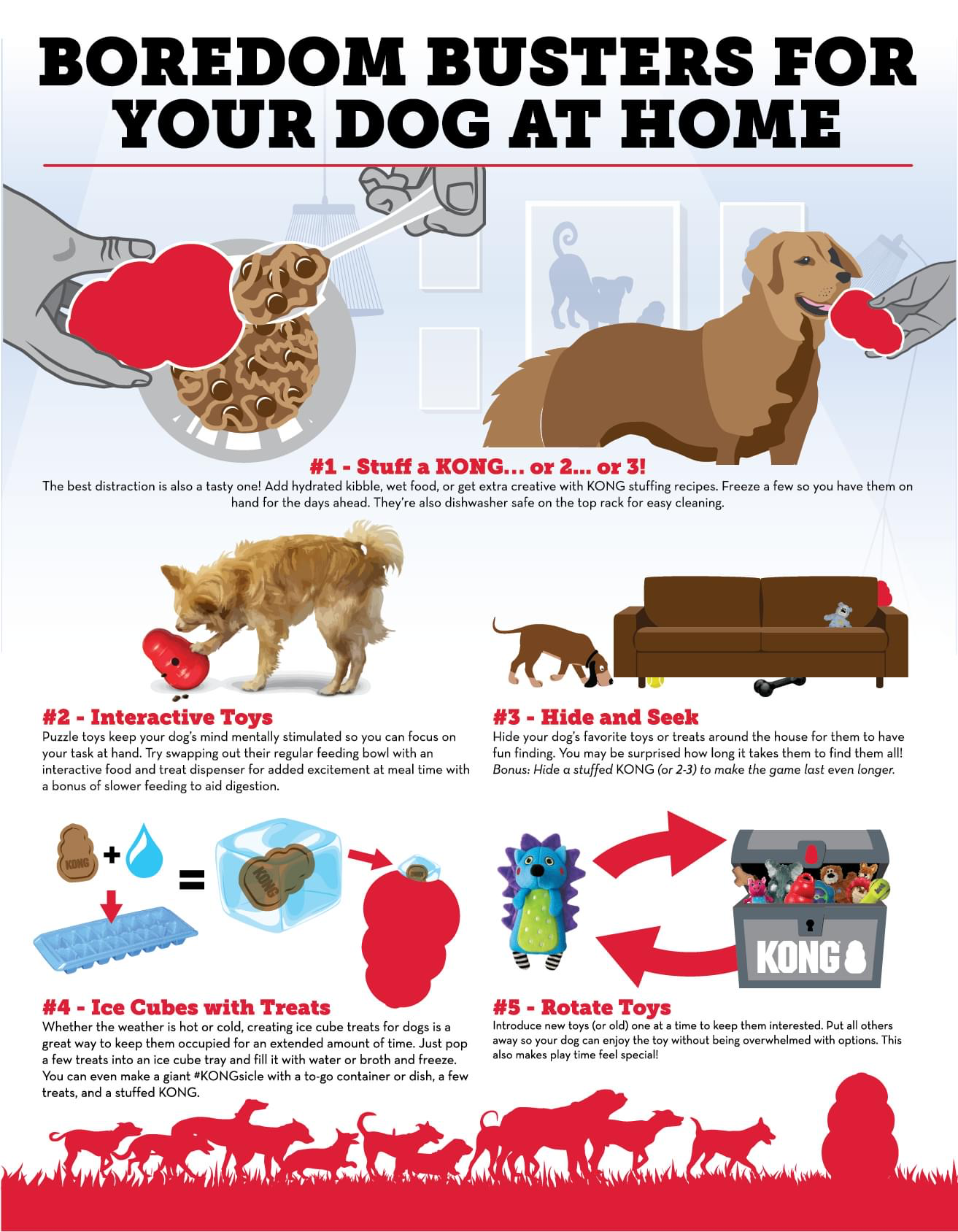 Boredom Busters For Your Dog at Home
