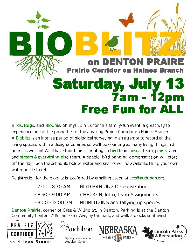 CE&VO: Bio Blitz on Denton Praire