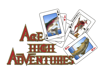 Ace High Adventures