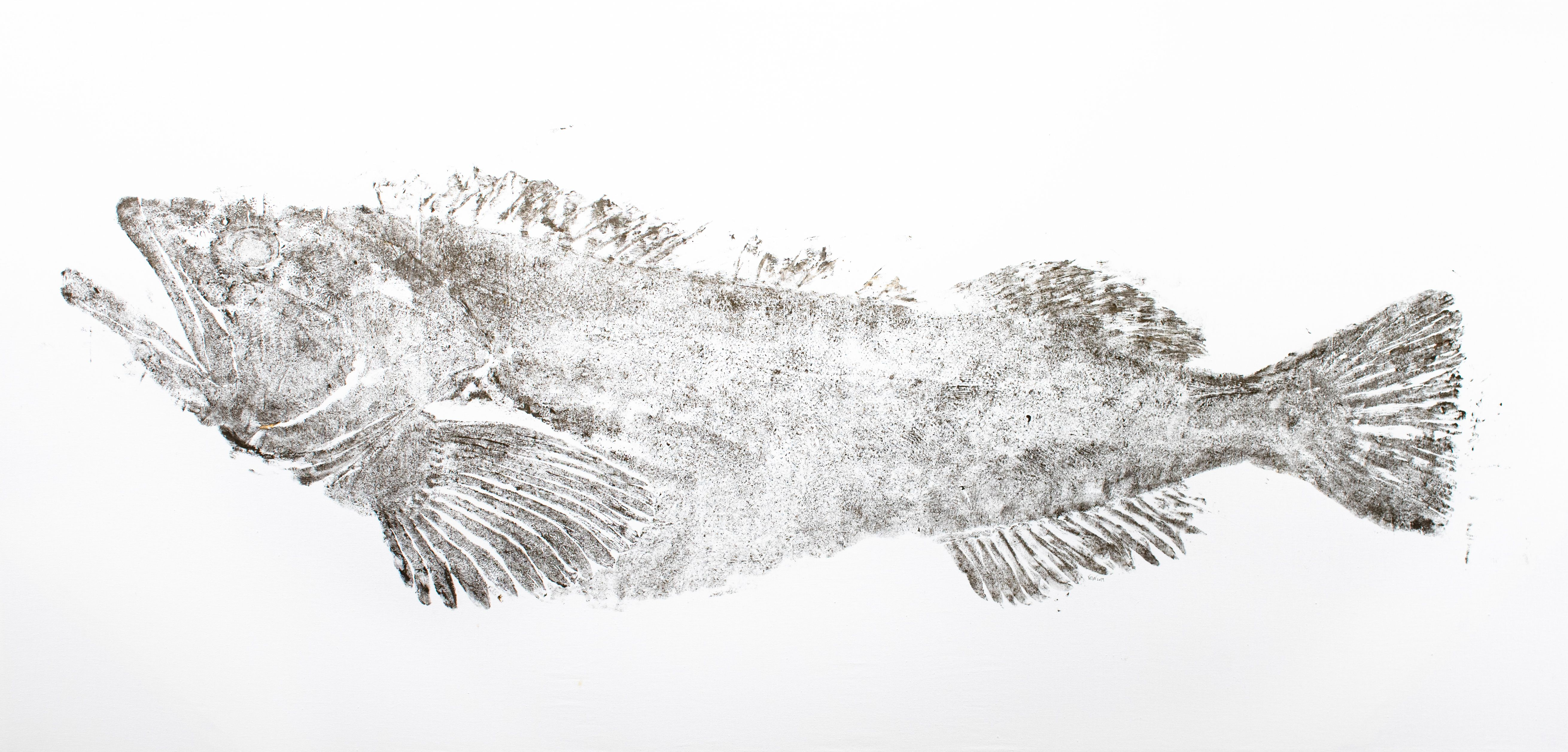 Ling Cod, 46lbs
