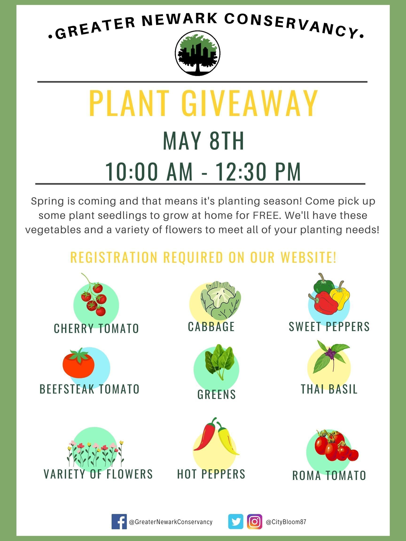 Plant Giveaway