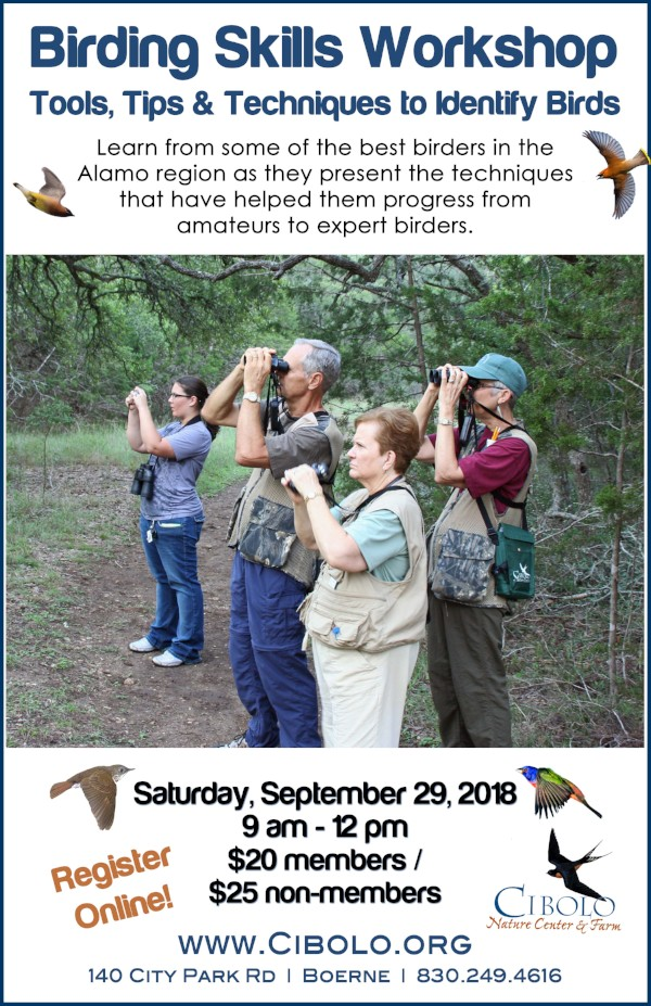 CNC: Birding Skills Workshop