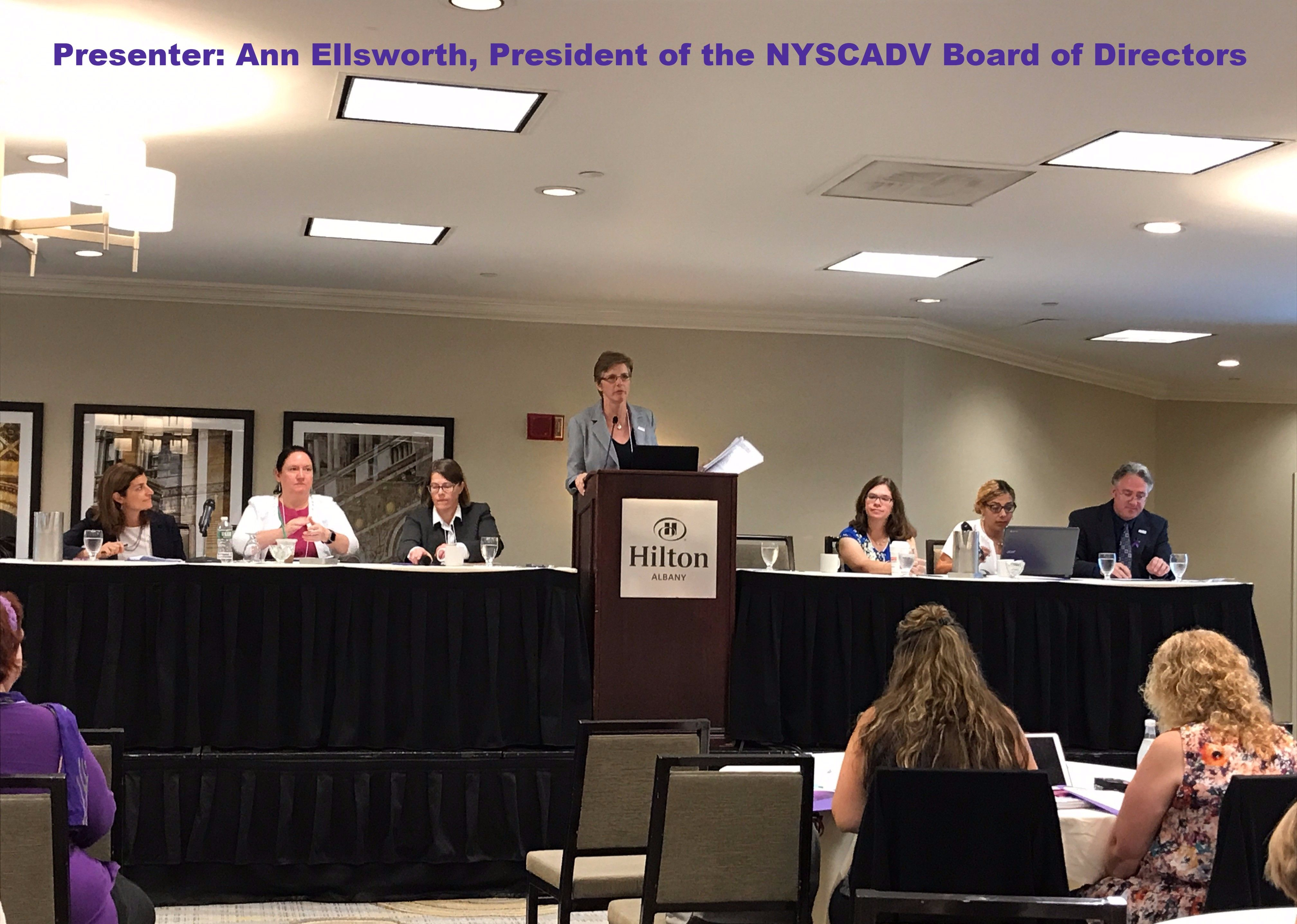 Recap of the 2017 NYSCADV Annual Meeting