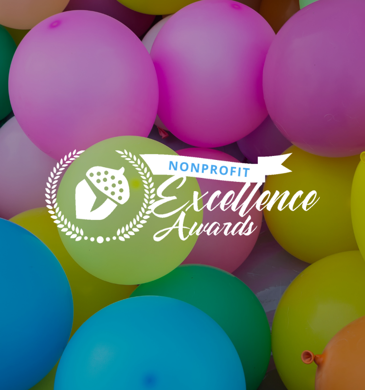 The Nonprofit Excellence Awards are NOW OPEN!