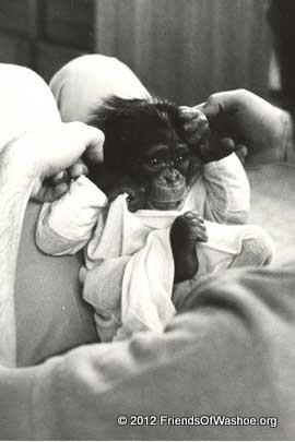 Tatu as an infant