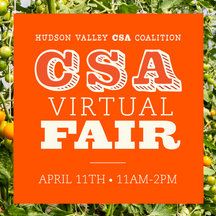 Virtual CSA Fair Innovation Brief