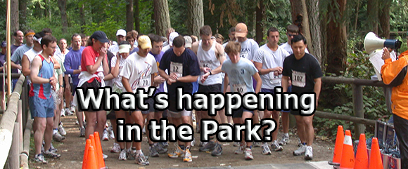 What's happening in the park