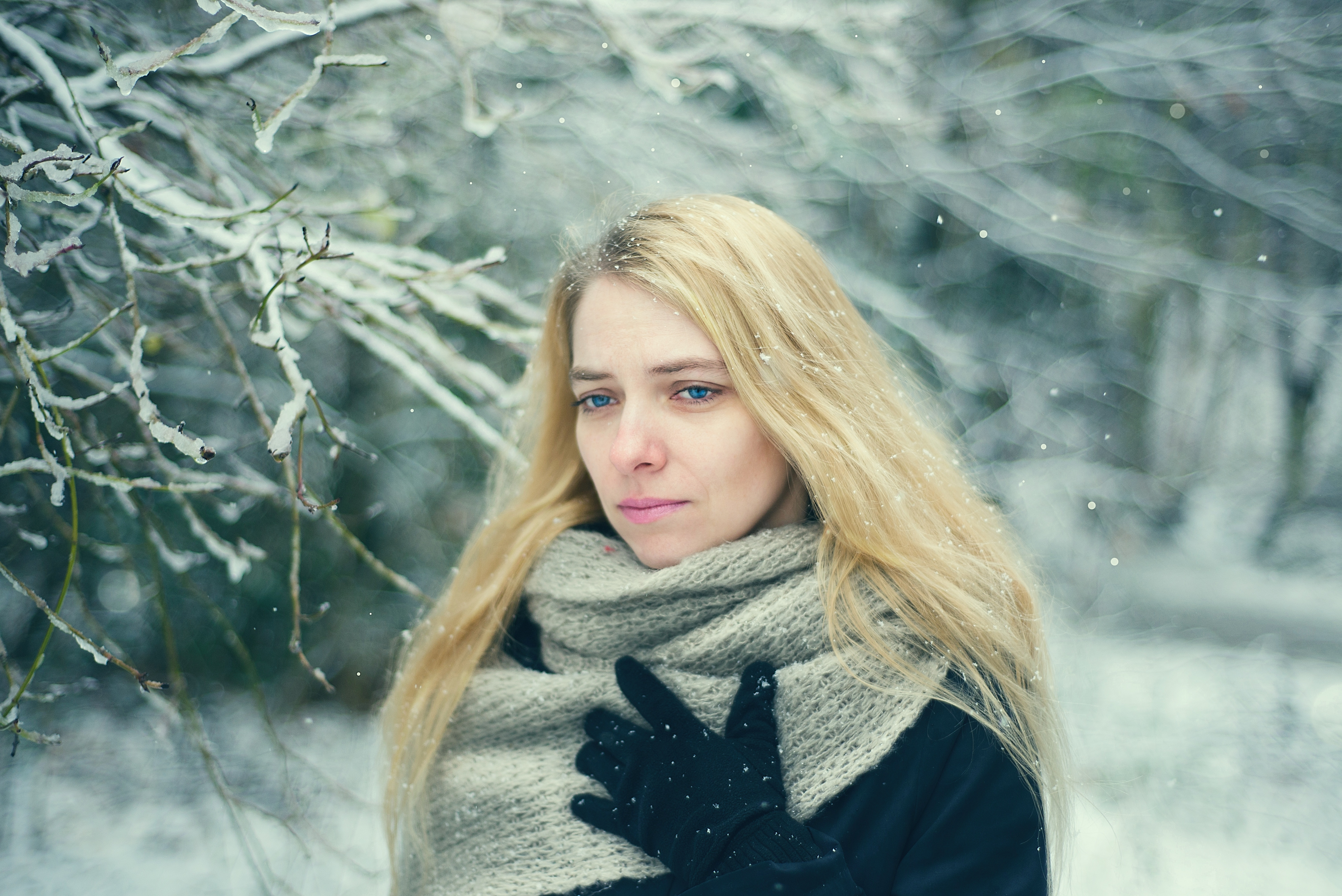 Winter Blues and Holiday Stress