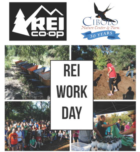 FARM: REI Workday