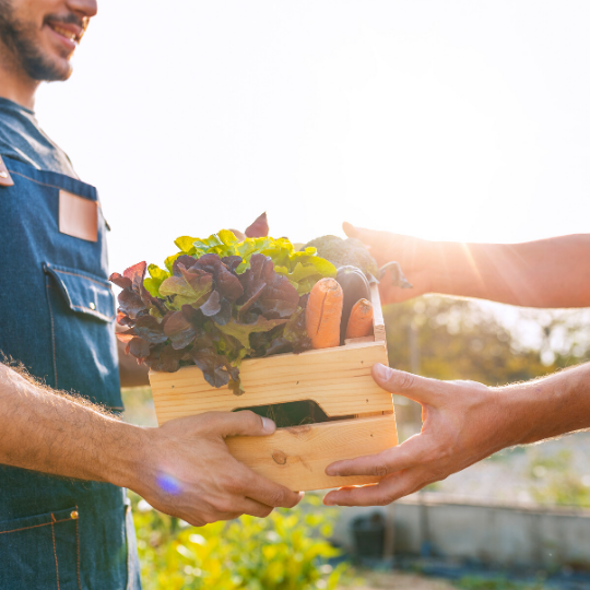 Provide low-income families with access to clean and fresh food.