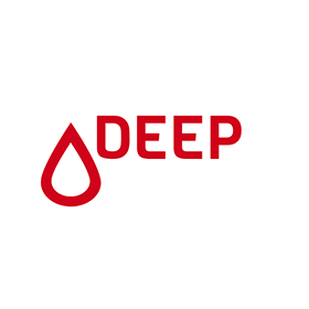 Diabetes Empowerment Education Program (DEEP)