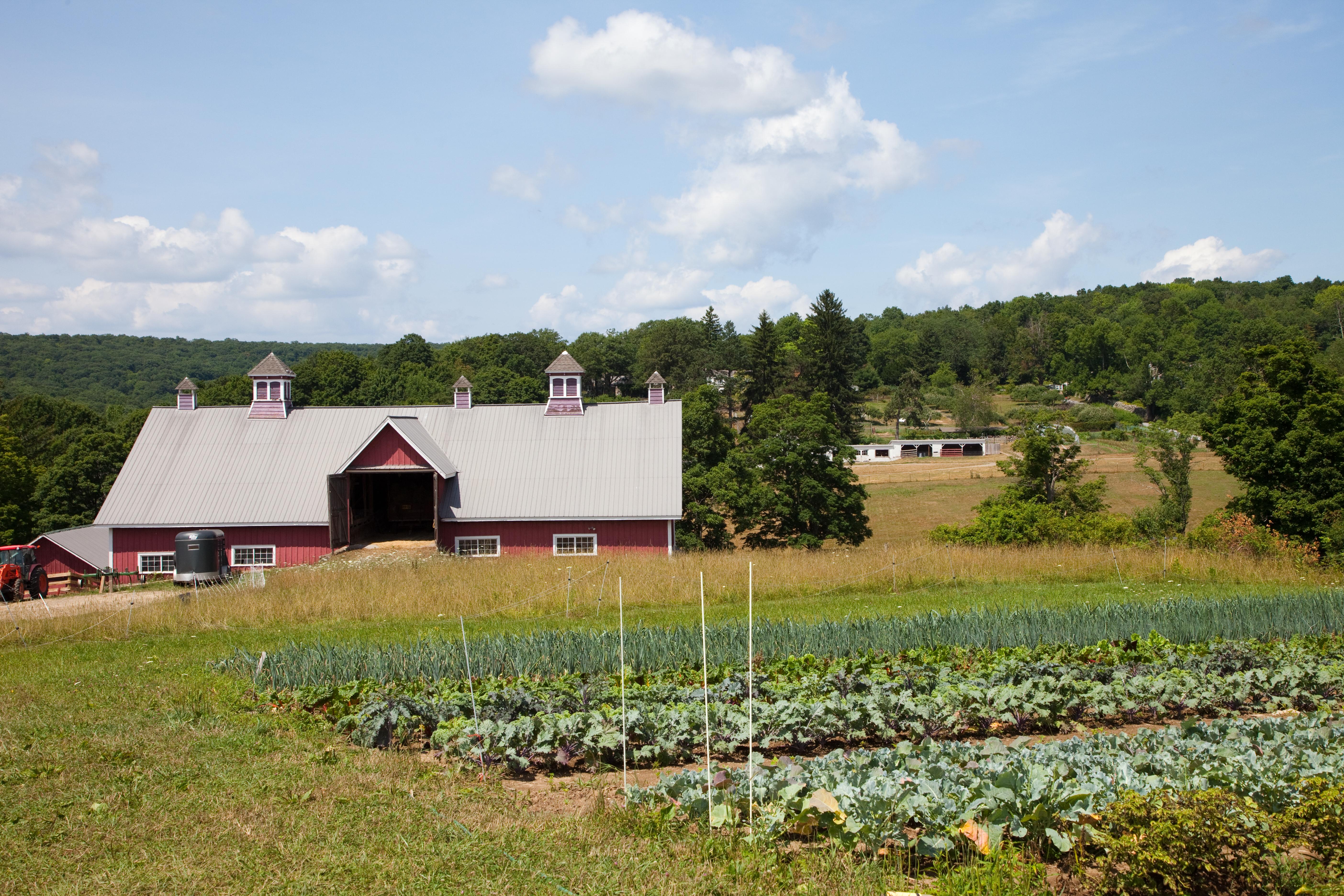 Partner Spotlight: The Hudson Valley Farmlink Network