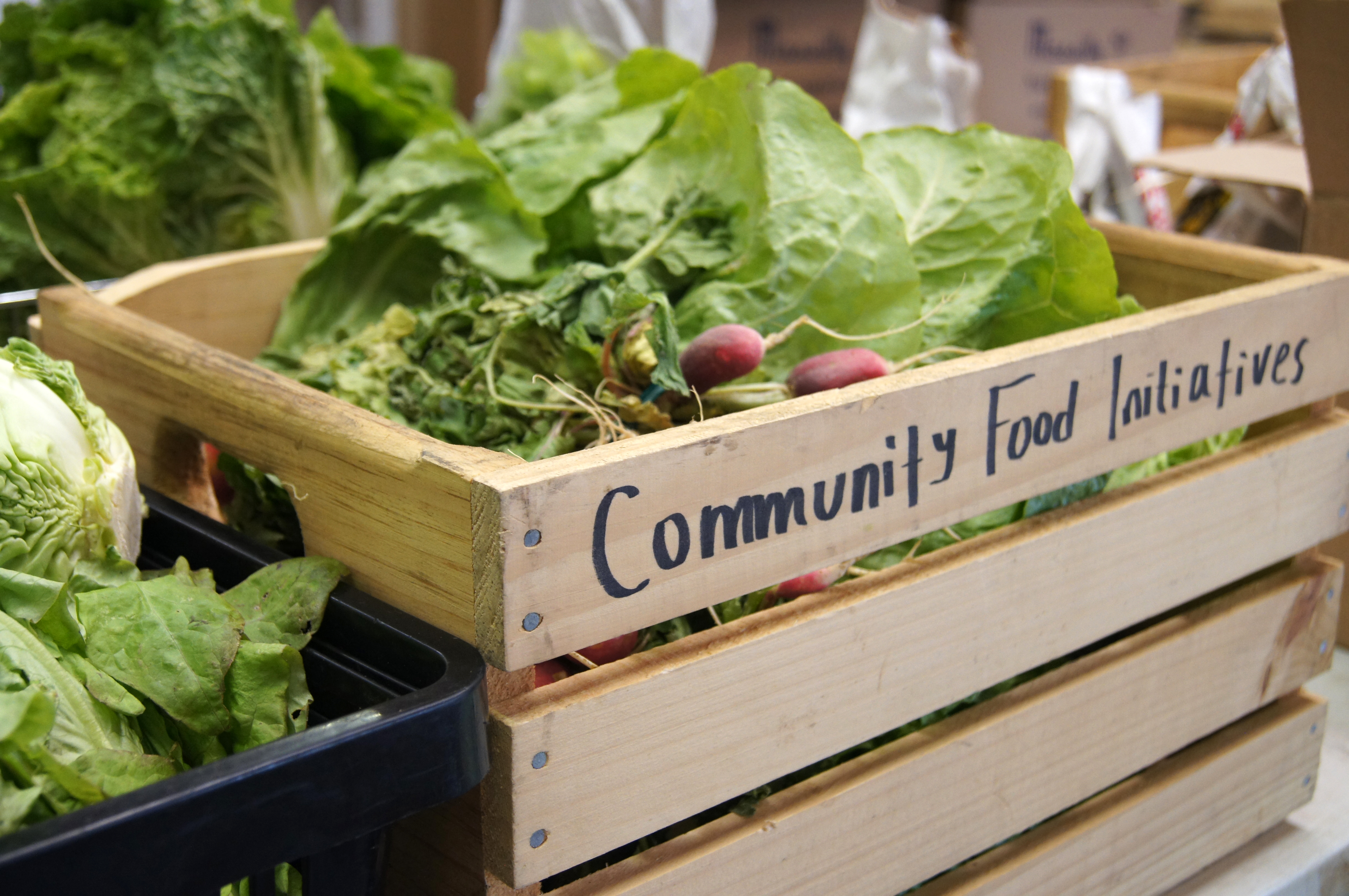 Local Food Access For All