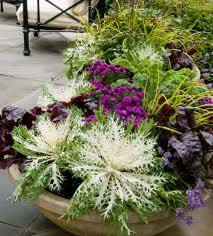 Create Your Own Fall Container Garden