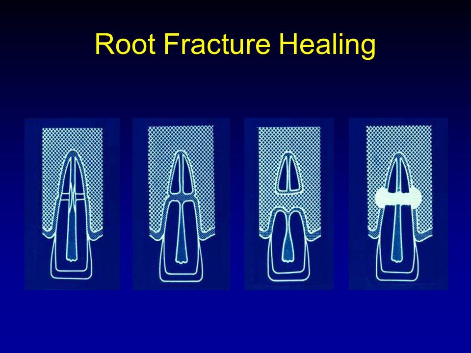 cornerstone endodontics   referring doctors   jamie u0026 39 s endo
