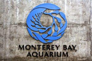 FREE Monterey Bay Aquarium Tickets