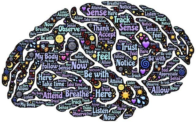 Inside the Teenage Brain