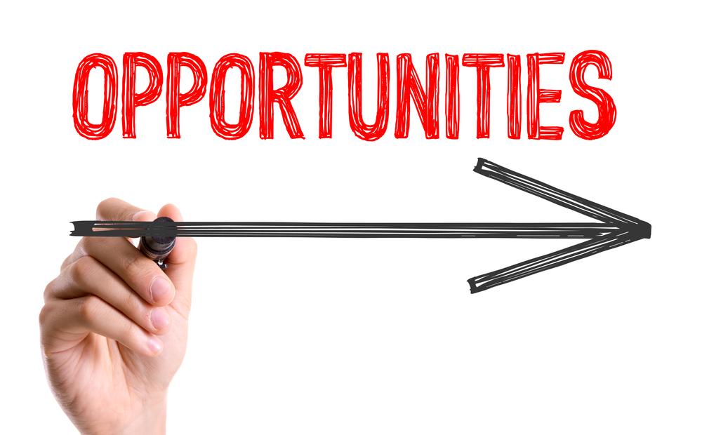 Opportunities in Publishing