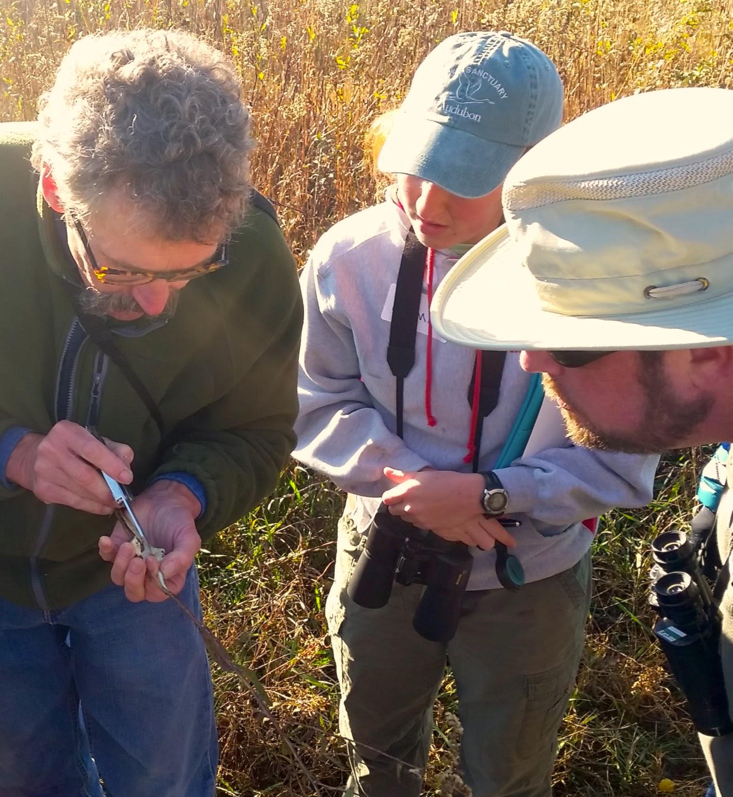 Volunteering In Lincoln Ne: Nebraska Master Naturalist Foundation : Members : Report