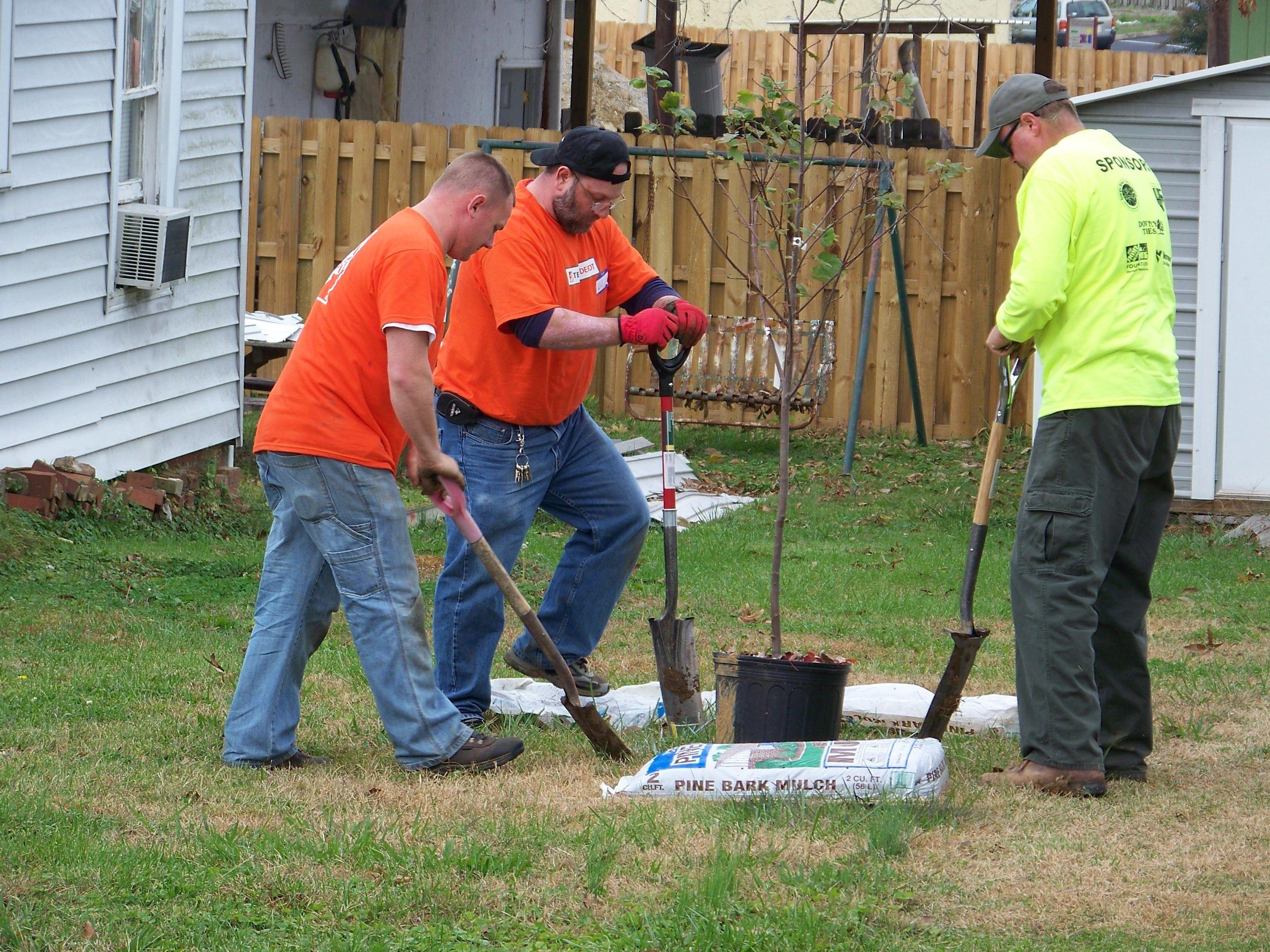 Southwest Georgia ReLeaf Tree Giveaway Program