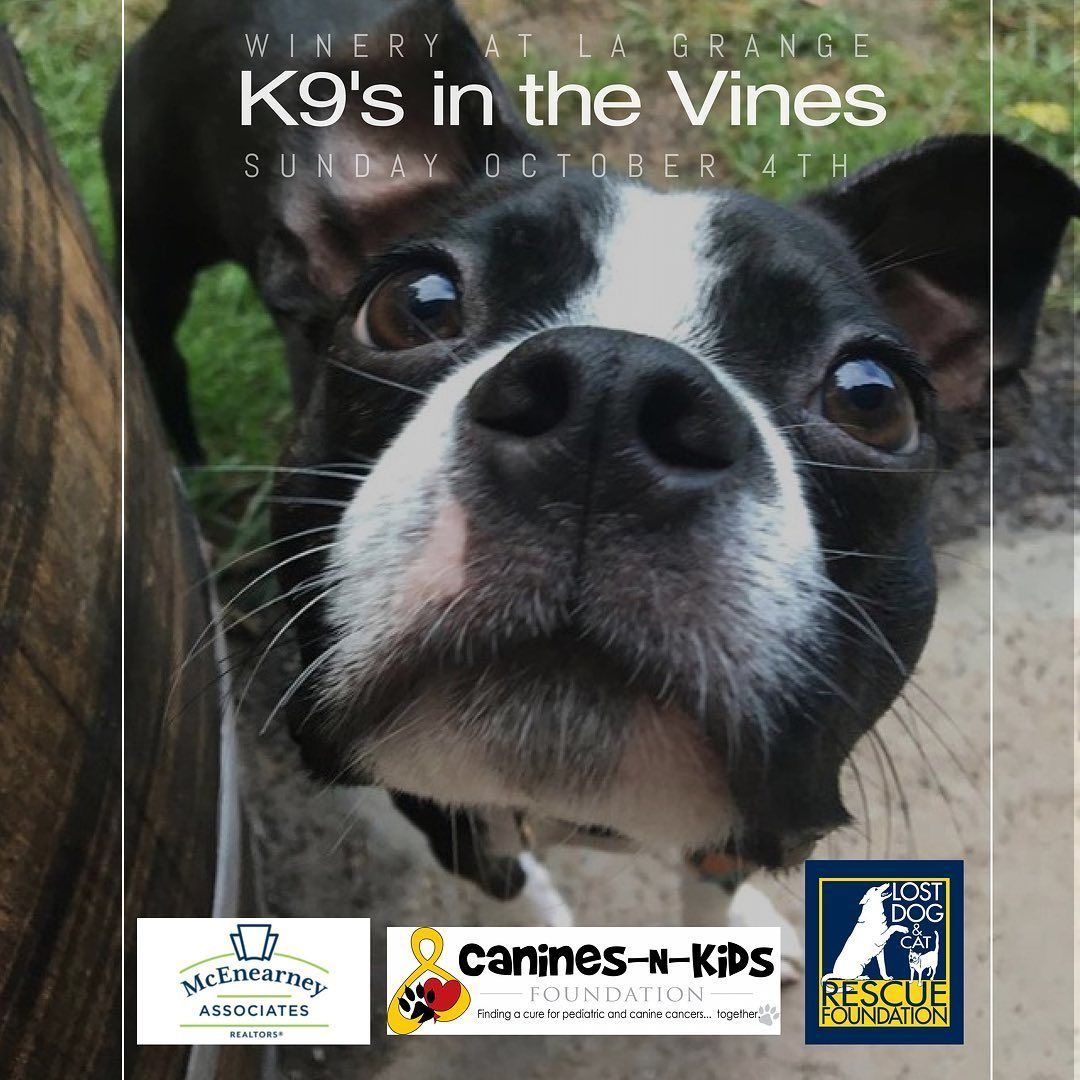 Canines in the Vines
