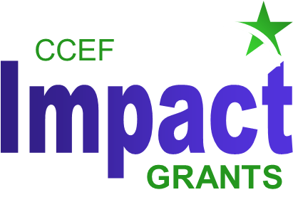 IMPACT Grants Awarded