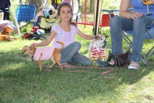 Girl petting dogs