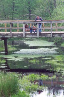 Family enjoying wetland