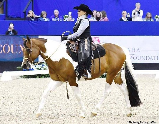 Lynn Palm Establishes Western Dressage Grant Fund at TDF