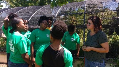 Solar Youth Inc News Events Blog Posts Exploring