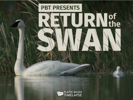 Return of the Swan_ Platte Basin Timelapse project_ film and essay