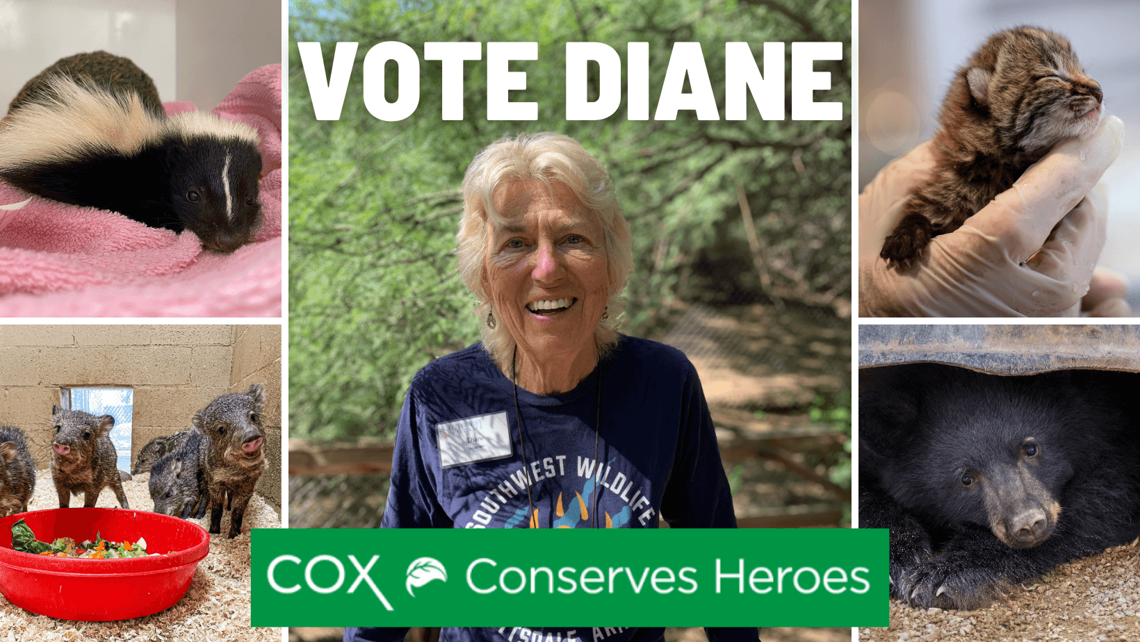 Vote Diane for Cox Conserves Heroes 2021!